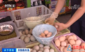 """蛋价不""""蛋""""定?价格飙升近20%!还会继续涨吗?"""